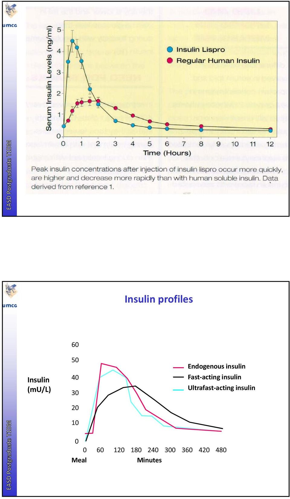 insulin Ultrafast acting insulin 0 0 60