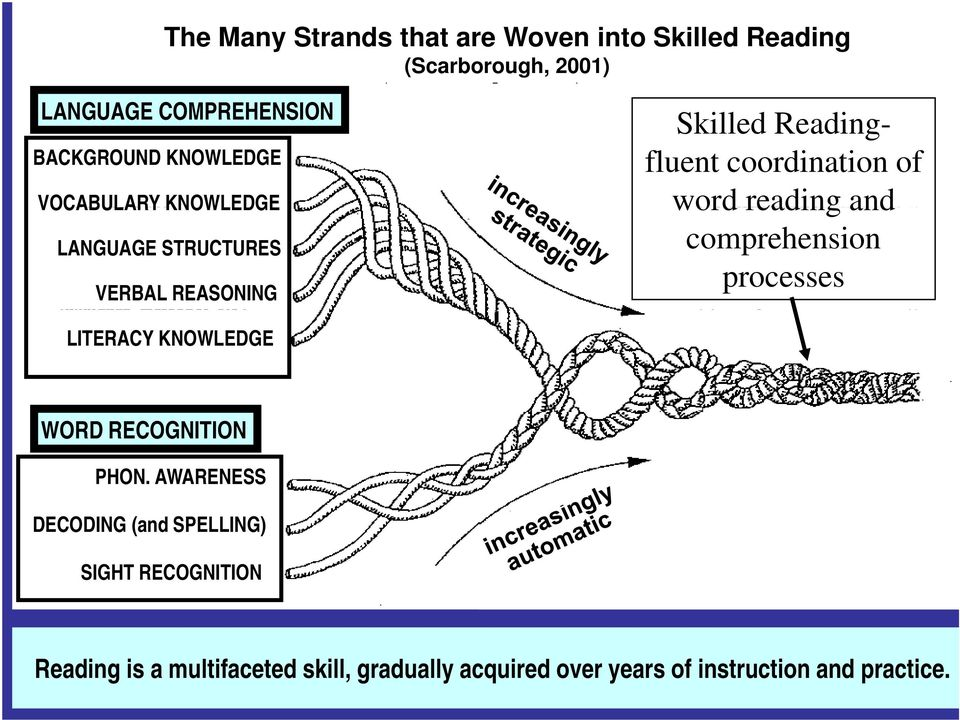 comprehension SKILLED READING: fluent execution and coordination of word recognition processes and text comprehension.