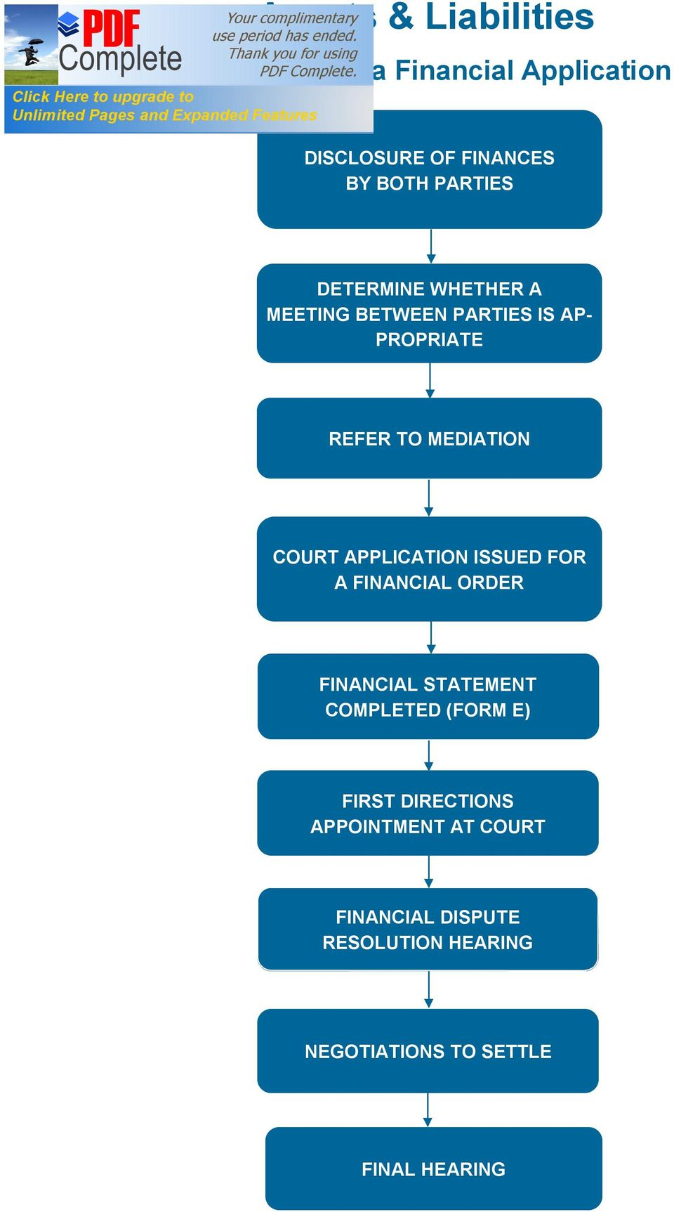 APPLICATION ISSUED FOR A FINANCIAL ORDER FINANCIAL STATEMENT COMPLETED (FORM E) FIRST