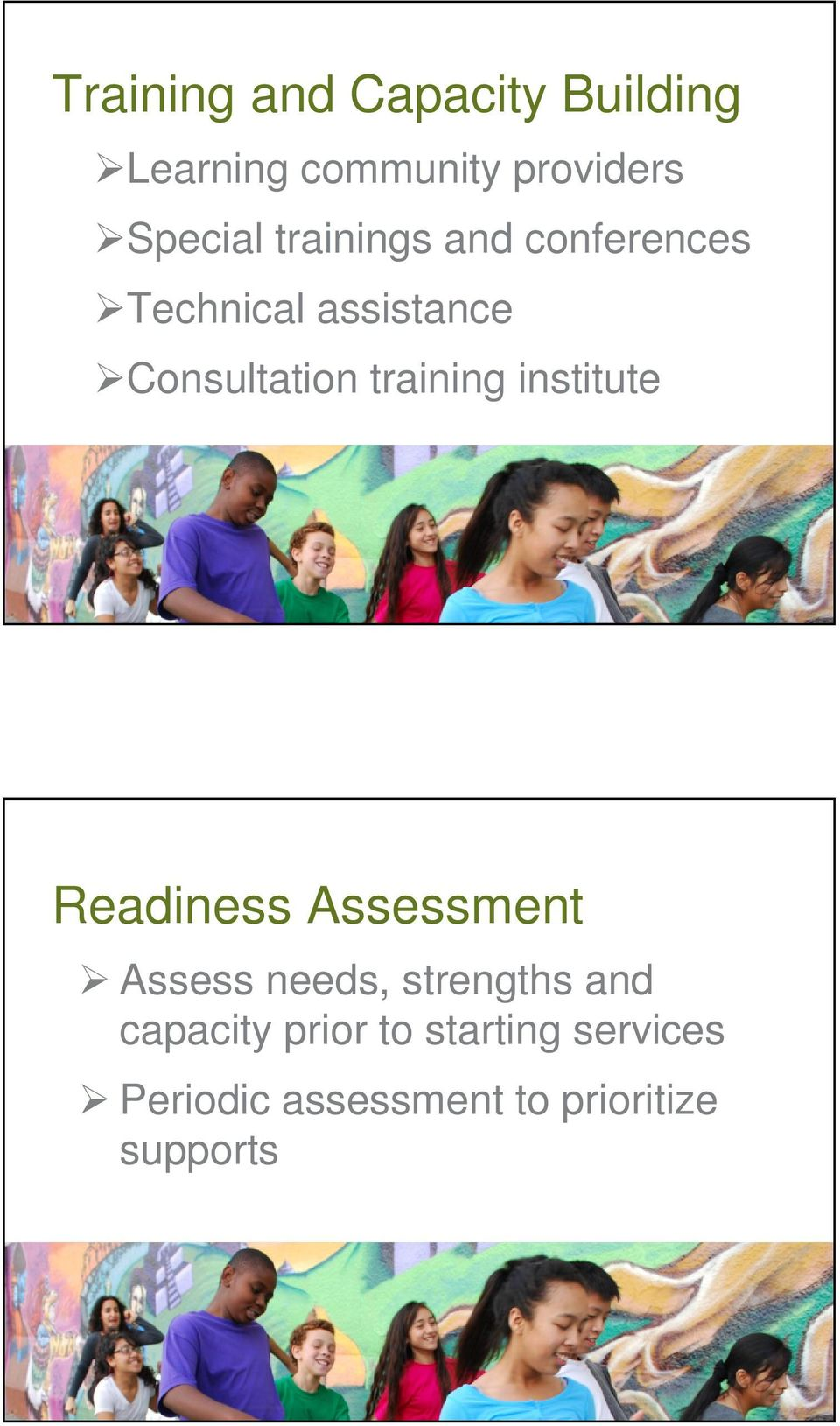 institute Readiness Assessment Assess needs, strengths and capacity