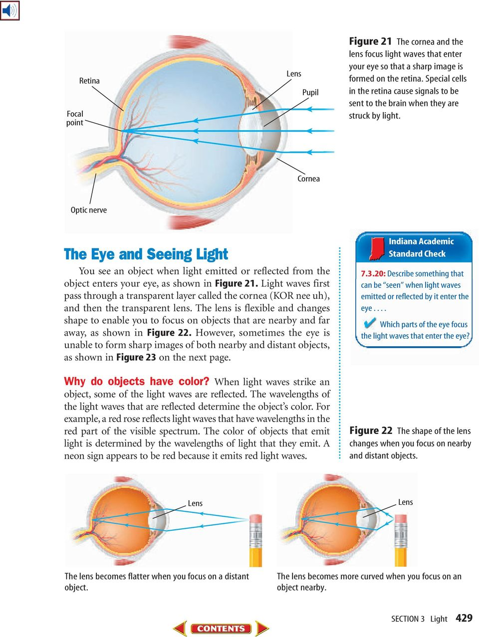 Cornea Optic nerve The Eye and Seeing Light You see an object when light emitted or reflected from the object enters your eye, as shown in Figure 21.