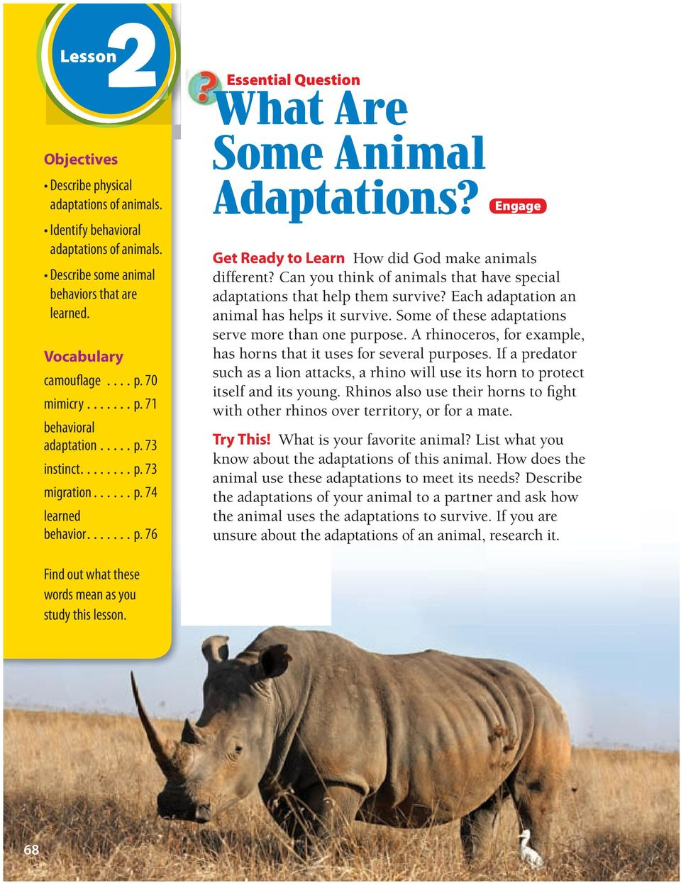 Can you think of animals that have special adaptations that help them survive? Each adaptation an animal has helps it survive. Some of these adaptations serve more than one purpose.