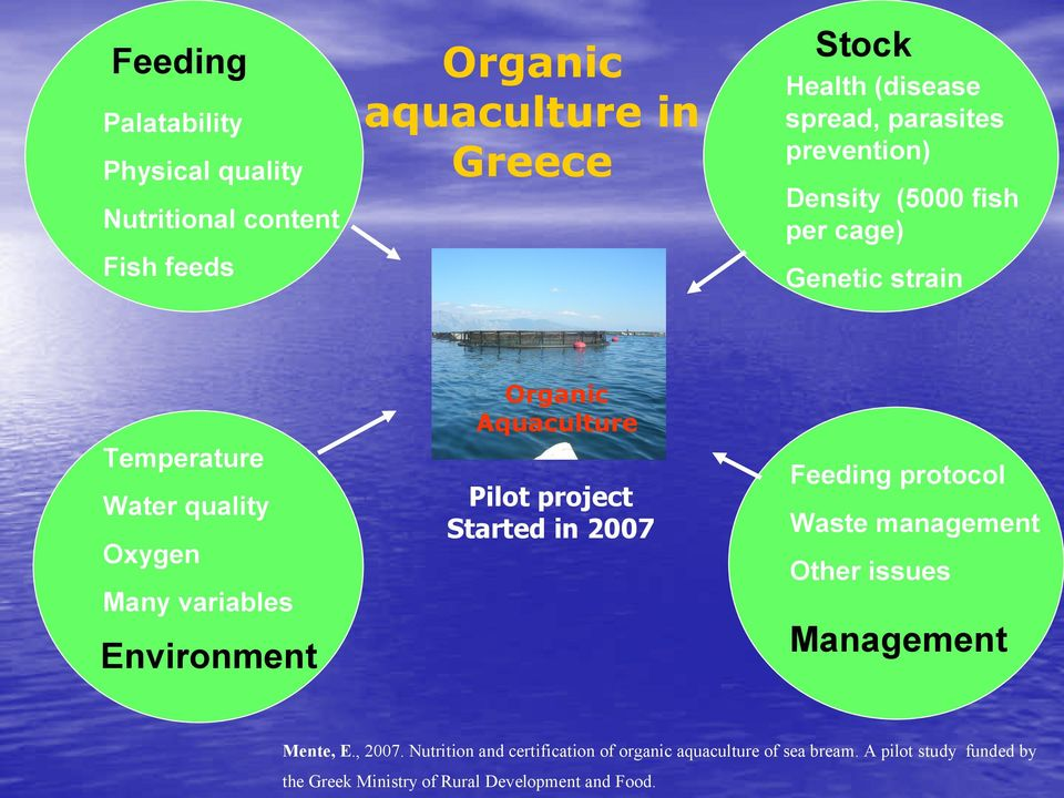 Organic Aquaculture Pilot project Started in 2007 Feeding protocol Waste management Other issues Management Mente, E., 2007.