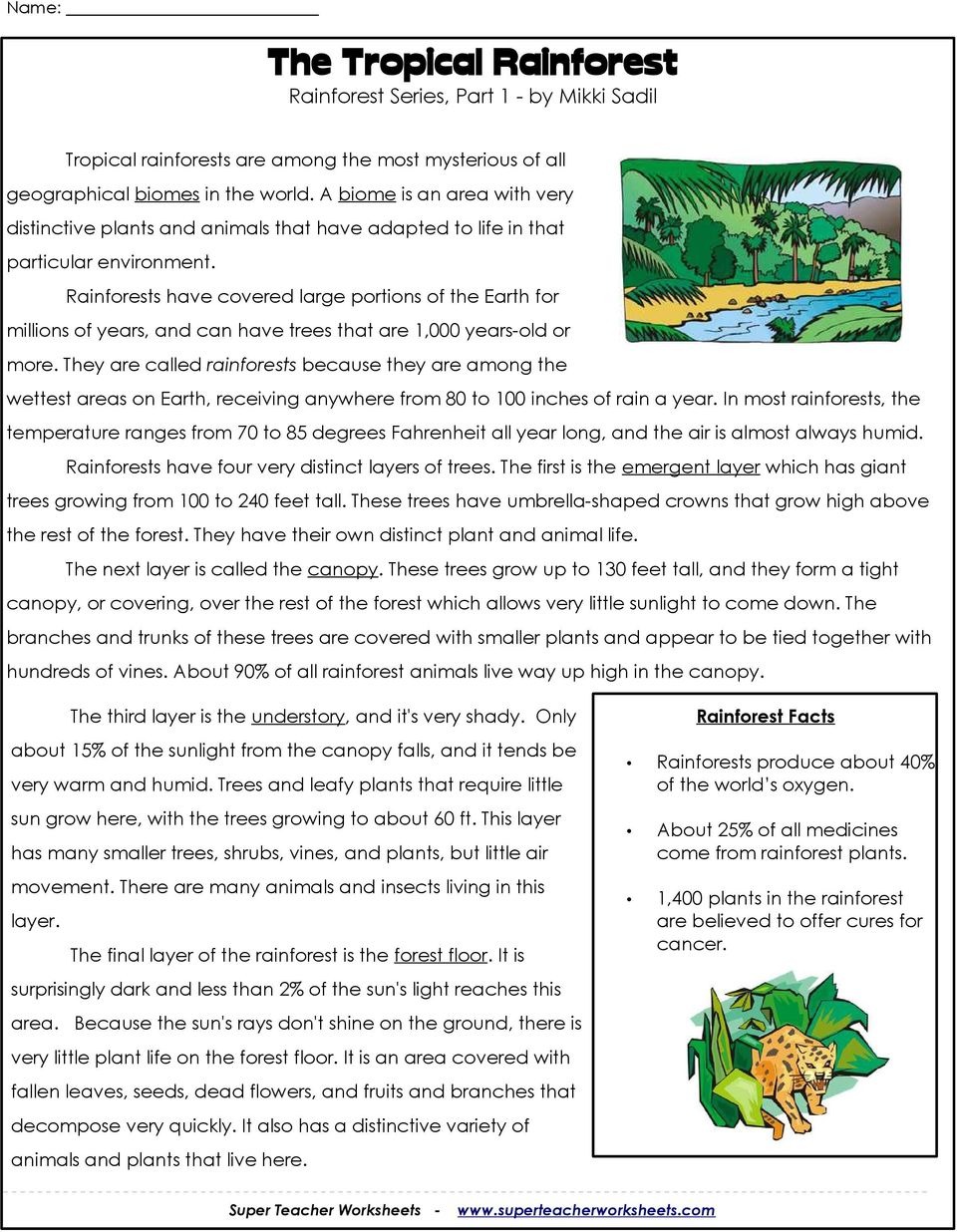 worksheet Tropical Rainforest Worksheet the tropical rainforest series part 1 by mikki sadil pdf rainforests have covered large portions of earth for millions years and can have