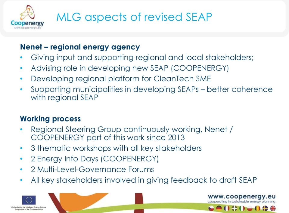 with regional SEAP Working process Regional Steering Group continuously working, Nenet / COOPENERGY part of this work since 2013 3 thematic