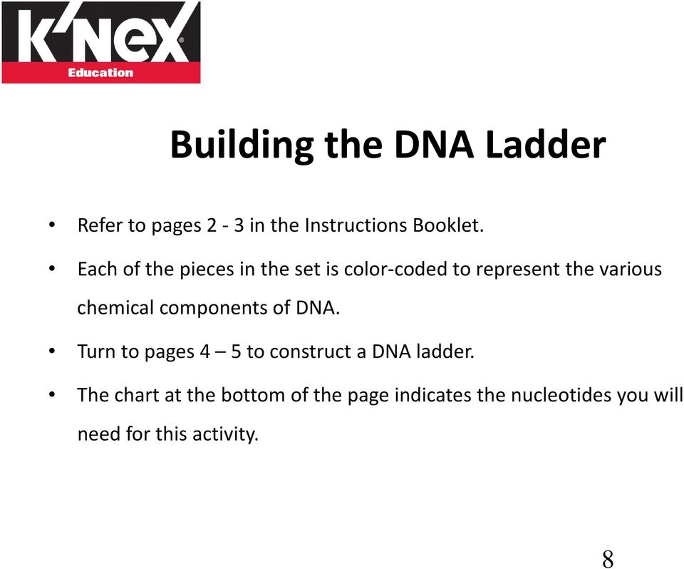 chemical components of DNA. Turn to pages 4 5 to construct a DNA ladder.
