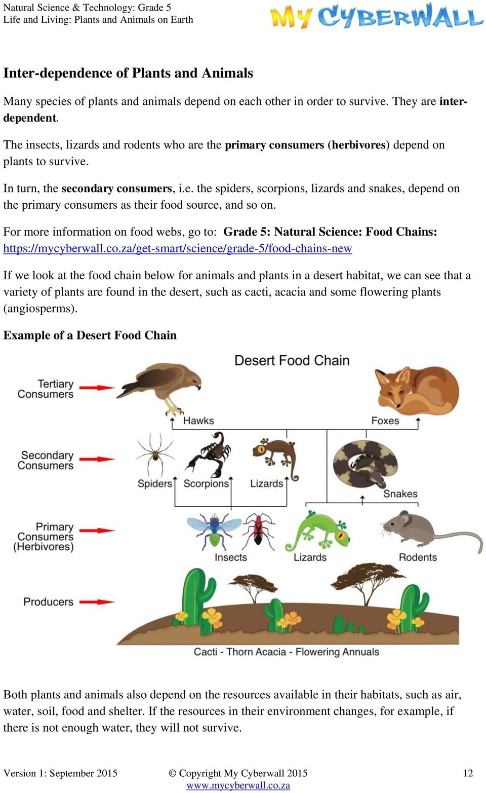 For more information on food webs, go to: Grade 5: Natural Science: Food Chains: https://mycyberwall.co.