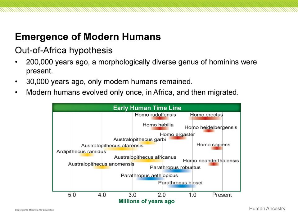 present. 30,000 years ago, only modern humans remained.