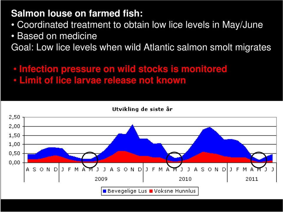levels when wild Atlantic salmon smolt migrates Infection