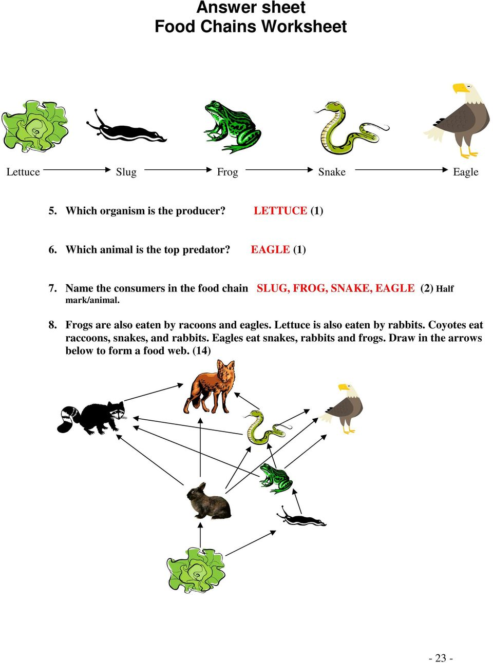 Name the consumers in the food chain SLUG, FROG, SNAKE, EAGLE (2) Half mark/animal. 8.