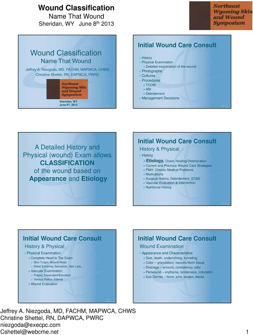 Healing/Deterioration Current and Previous Wound Care Strategies PMH, Chronic Medical Problems Medications Surgical History, Debridement, STSG Vascular Evaluation & Intervention Nutritional History