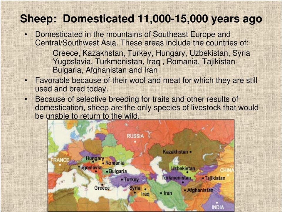 Tajikistan Bulgaria, Afghanistan and Iran Favorable because of their wool and meat for which they are still used and bred today.