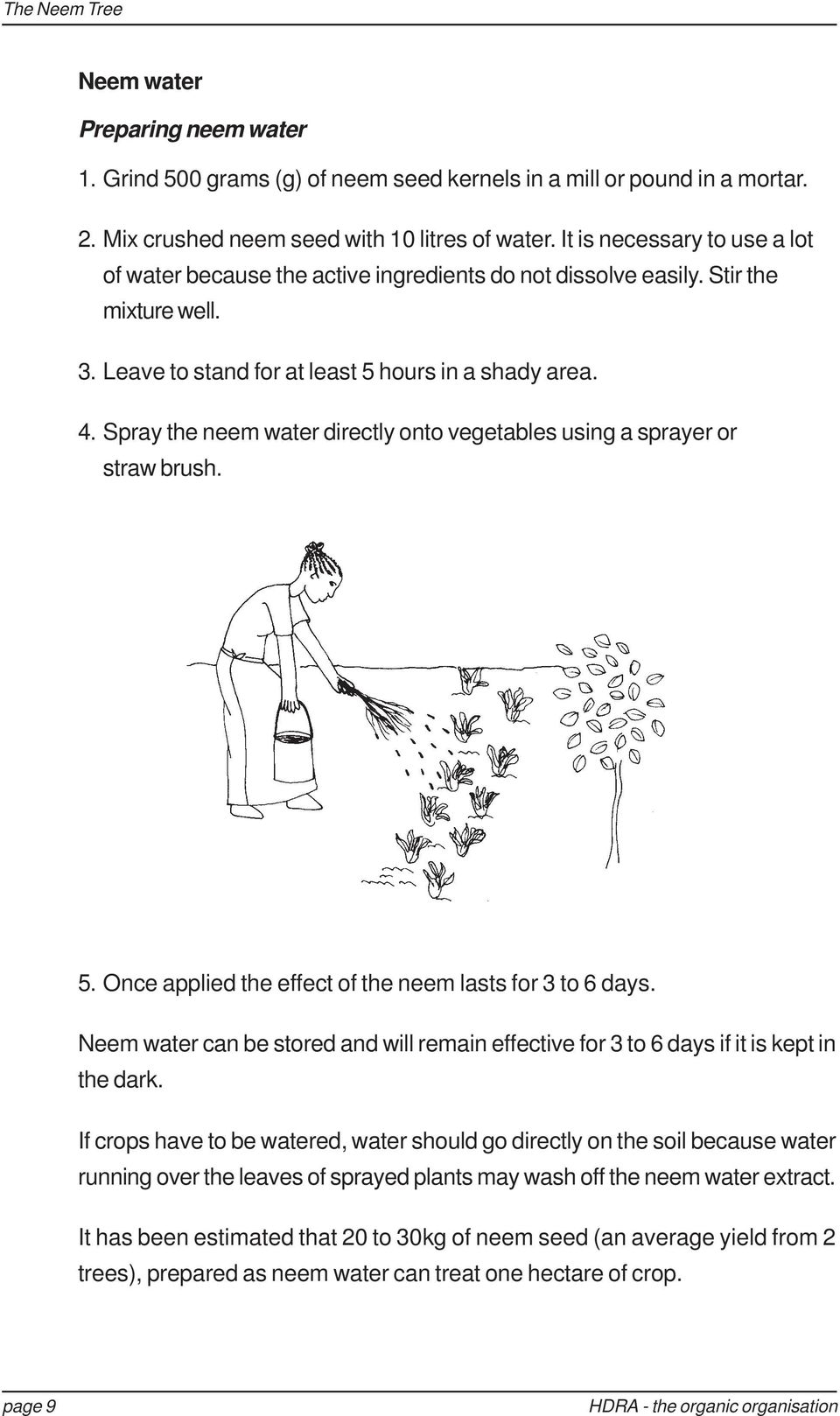 Spray the neem water directly onto vegetables using a sprayer or straw brush. 5. Once applied the effect of the neem lasts for 3 to 6 days.