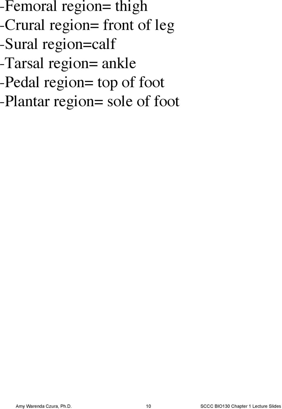 region= top of foot -Plantar region= sole of foot Amy
