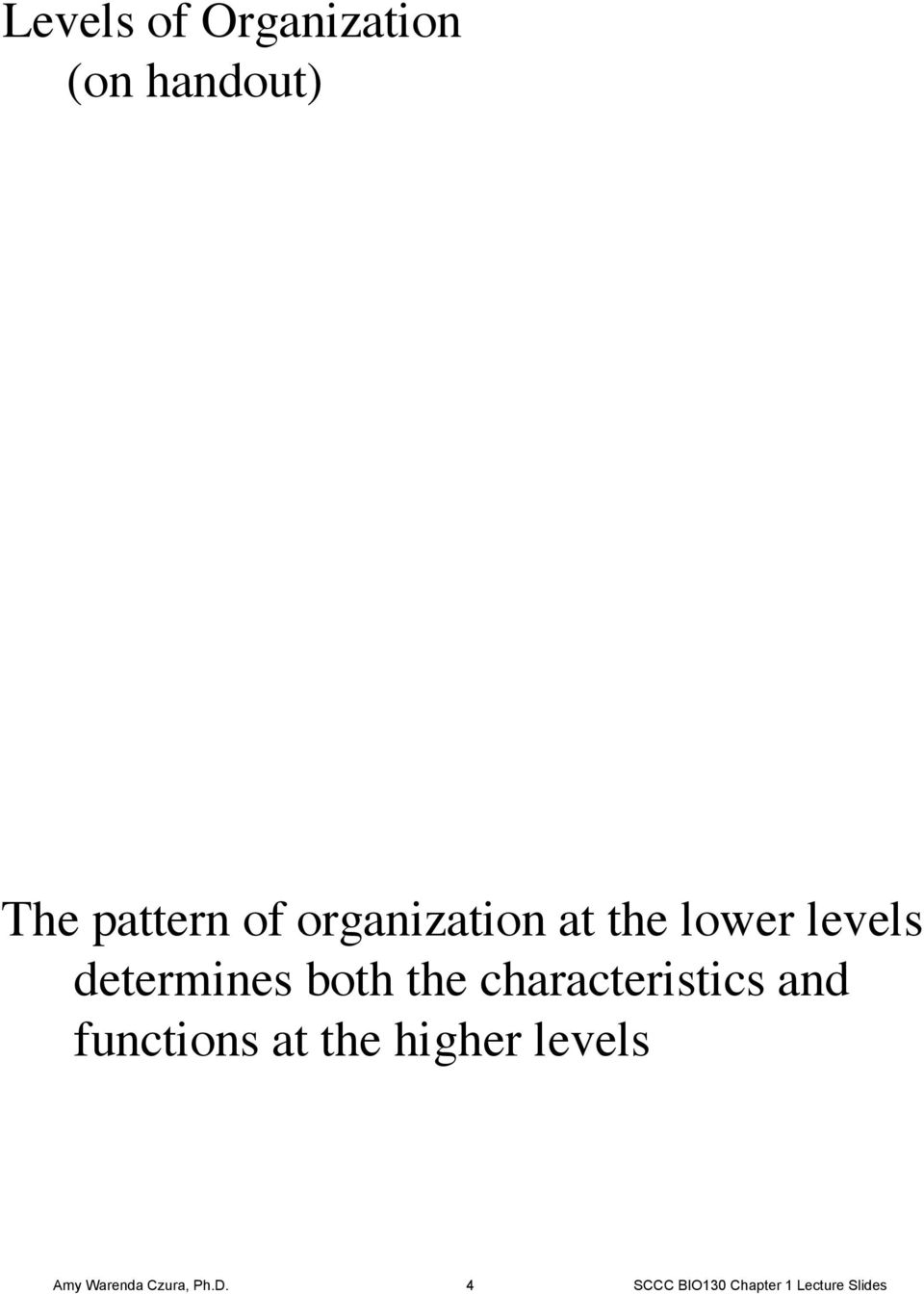 characteristics and functions at the higher levels Amy