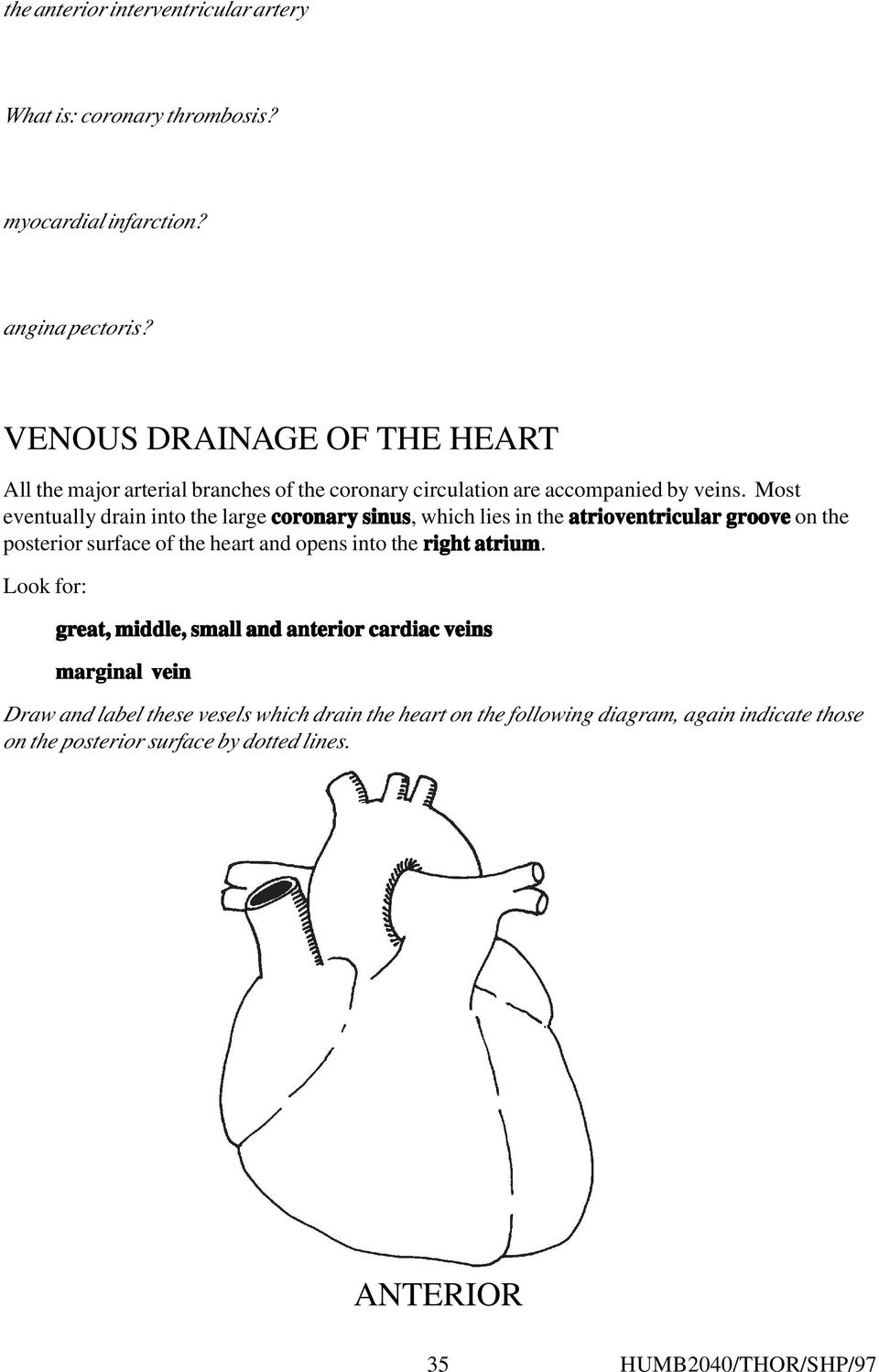 Most eventually drain into the large coronary sinus, which lies in the atrioventricular groove on the posterior surface of the heart and opens into the right