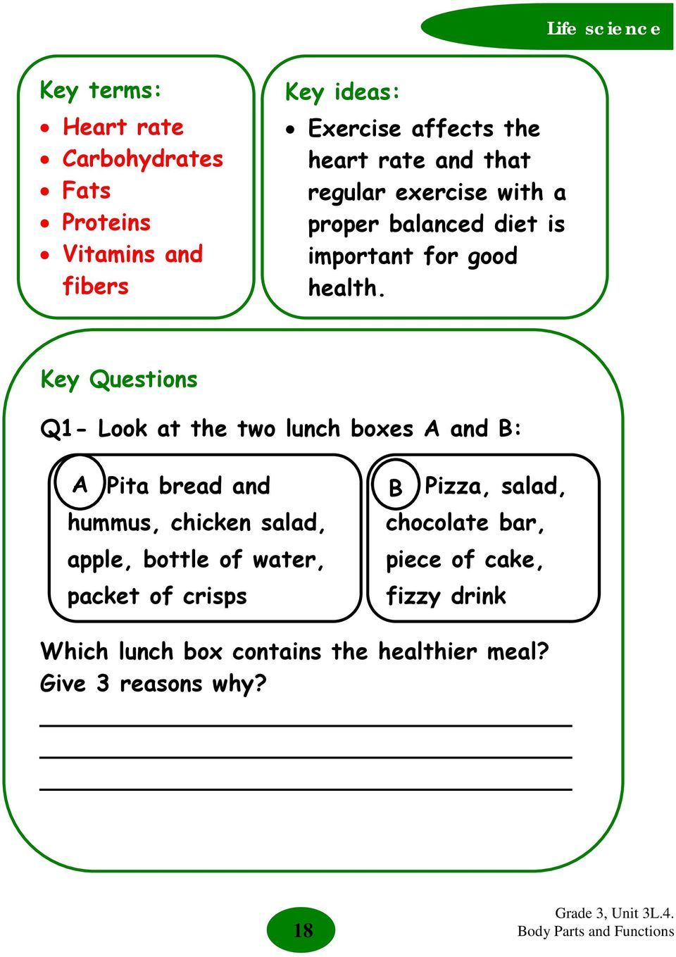 Key Questions Q1- Look at the two lunch boxes A and B: A Pita bread and hummus, chicken salad, apple, bottle of