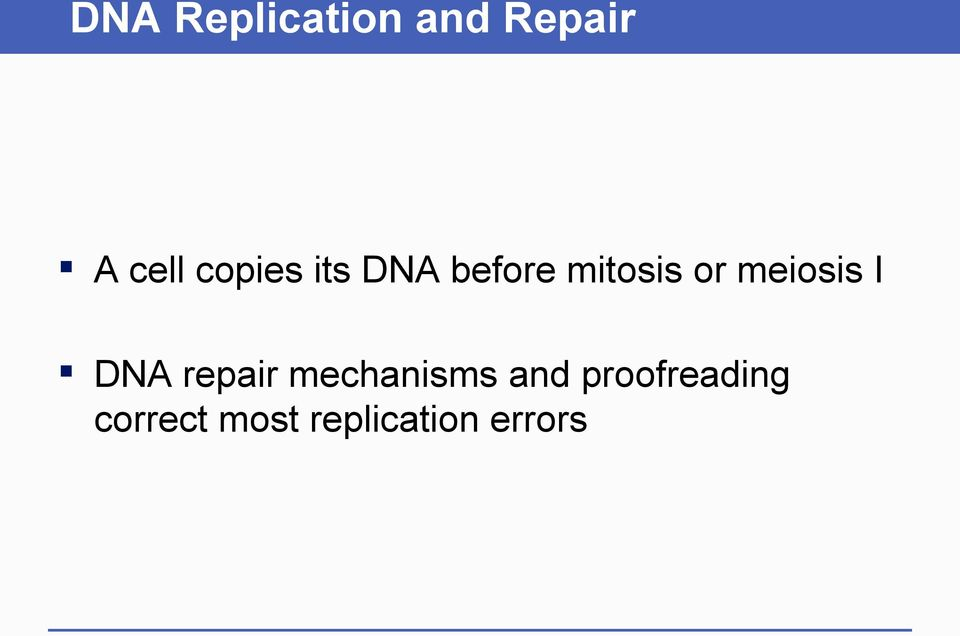 meiosis I DNA repair mechanisms and