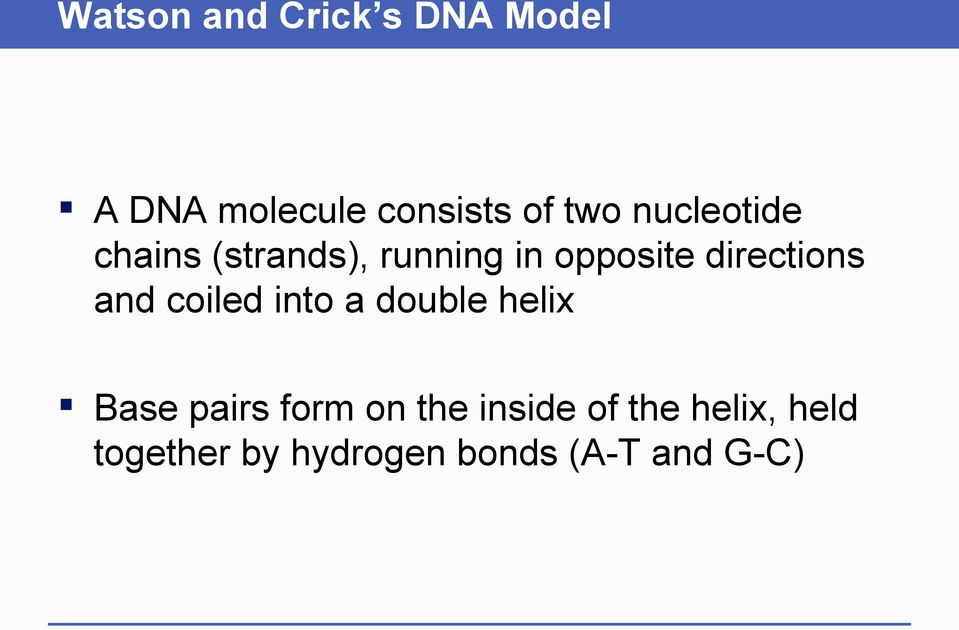 and coiled into a double helix Base pairs form on the