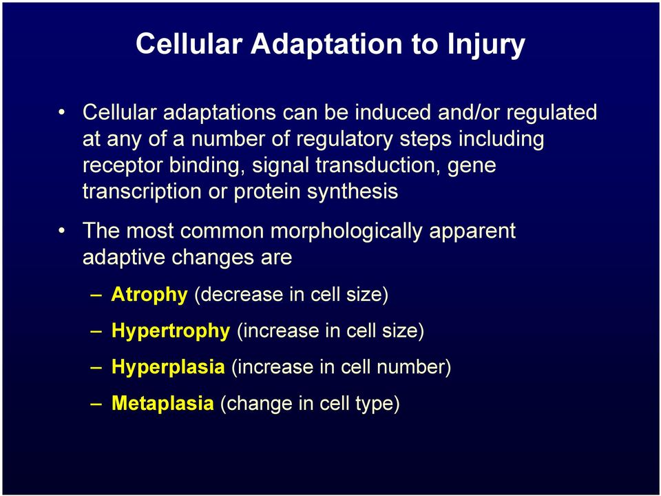 synthesis The most common morphologically apparent adaptive changes are Atrophy (decrease in cell
