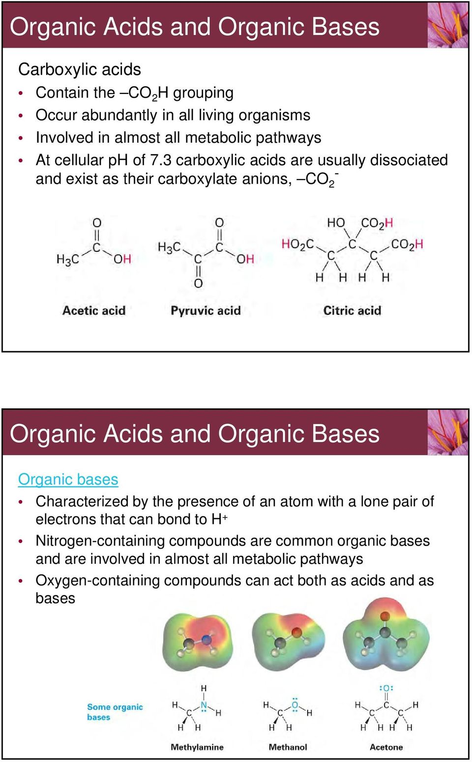 3 carboxylic acids are usually dissociated and exist as their carboxylate anions, CO 2 - Organic Acids and Organic Bases Organic bases