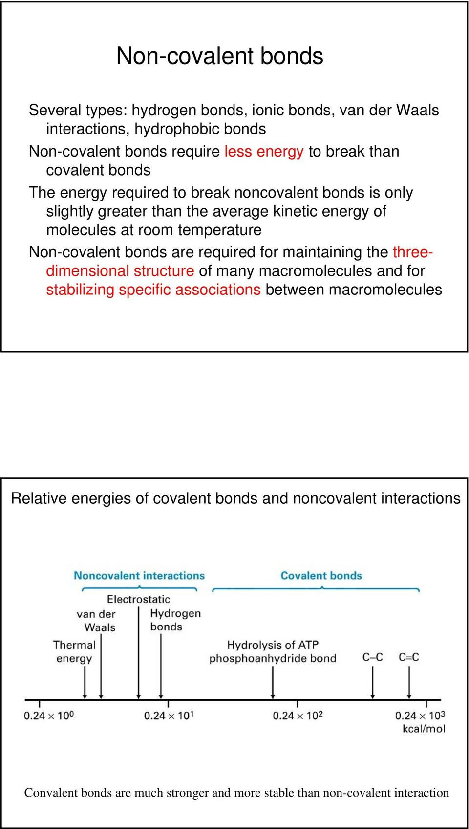 Non-covalent bonds are required for maintaining the threedimensional structure of many macromolecules and for stabilizing specific associations between