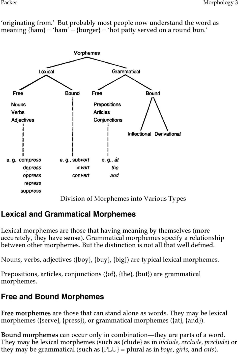 Grammatical morphemes specify a relationship between other morphemes. But the distinction is not all that well defined. Nouns, verbs, adjectives ({boy}, {buy}, {big}) are typical lexical morphemes.