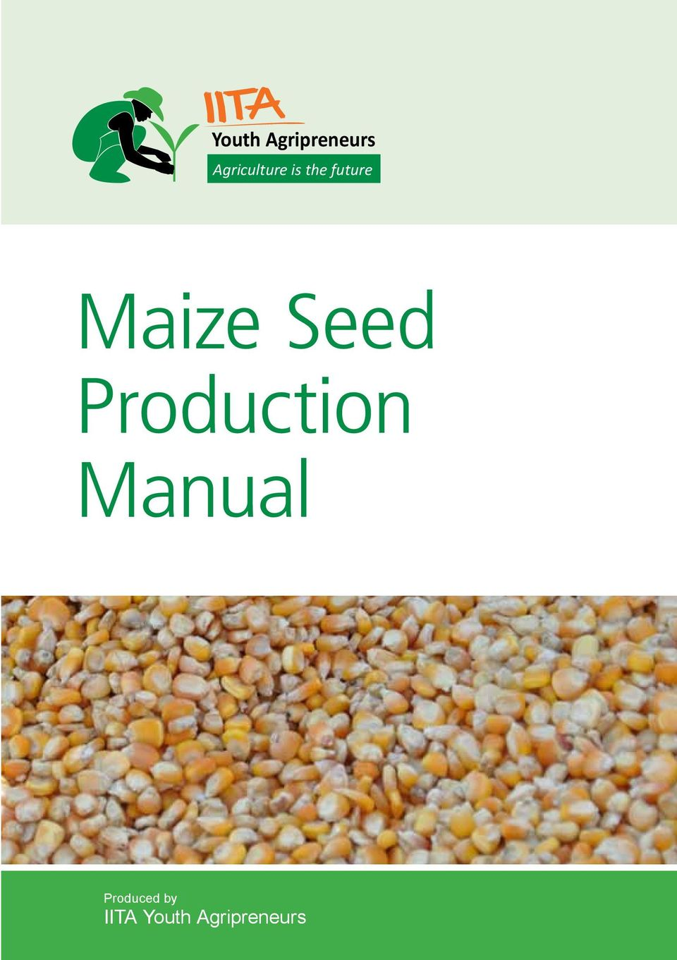 Maize Seed Production
