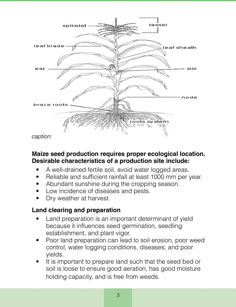 Land clearing and preparation Land preparation is an important determinant of yield because it influences seed germination, seedling establishment, and plant vigor.