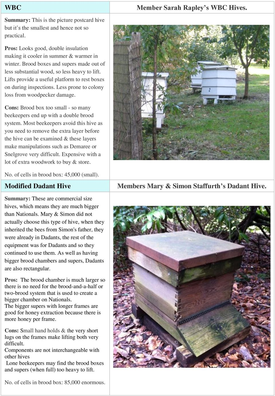 Lifts provide a useful platform to rest boxes on during inspections. Less prone to colony loss from woodpecker damage. Cons: Brood box too small - so many beekeepers end up with a double brood system.