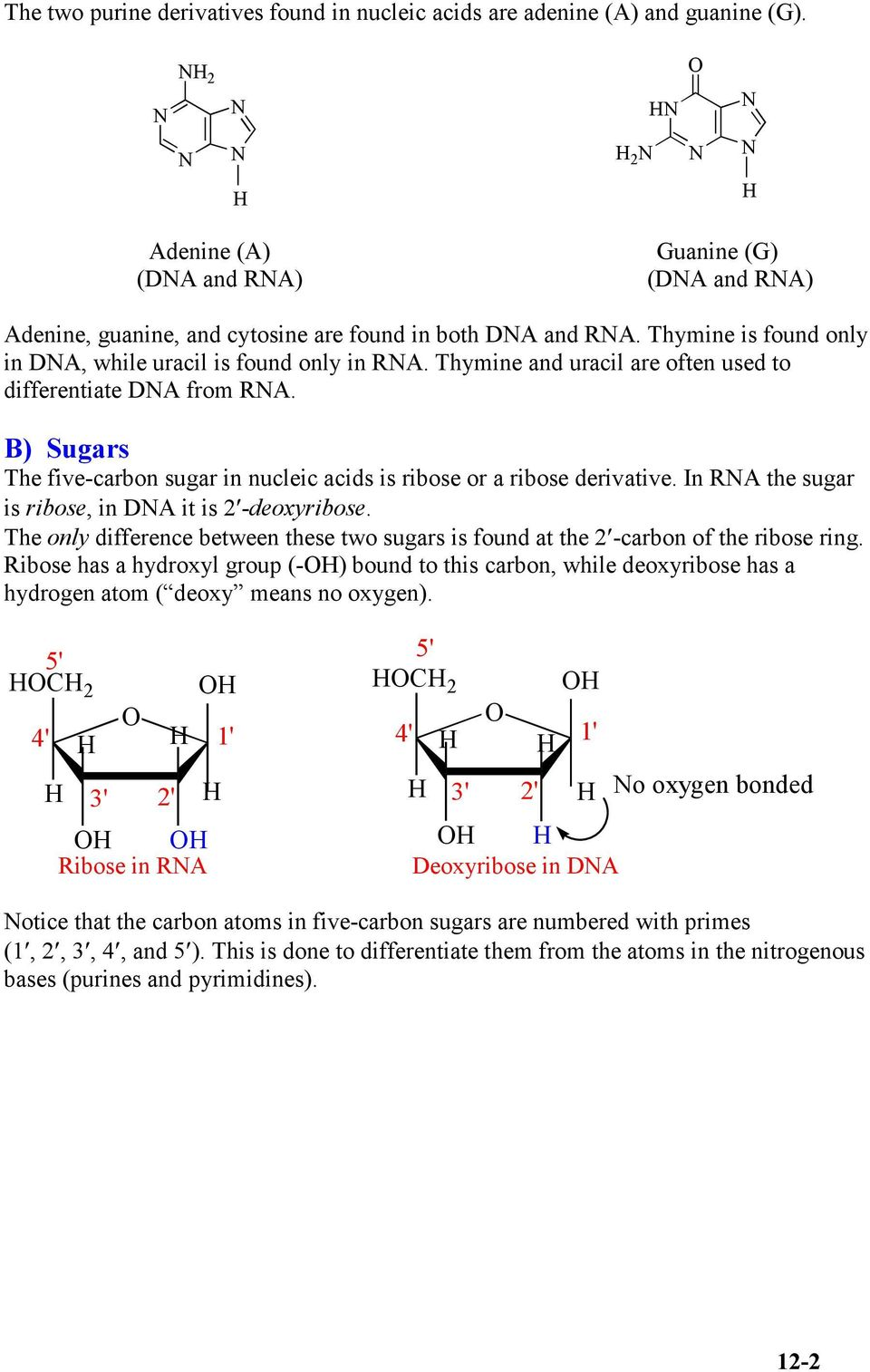 B) ugars The five-carbon sugar in nucleic acids is ribose or a ribose derivative. In RA the sugar is ribose, in DA it is 2 -deoxyribose.