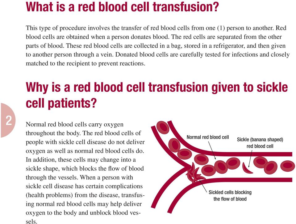 Donated blood cells are carefully tested for infections and closely matched to the recipient to prevent reactions. 2 Why is a red blood cell transfusion given to sickle cell patients?