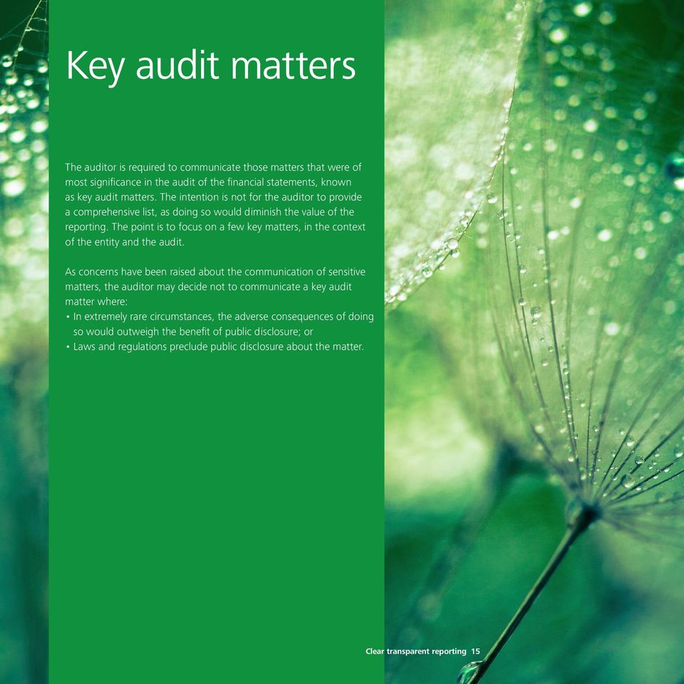 The point is to focus on a few key matters, in the context of the entity and the audit.