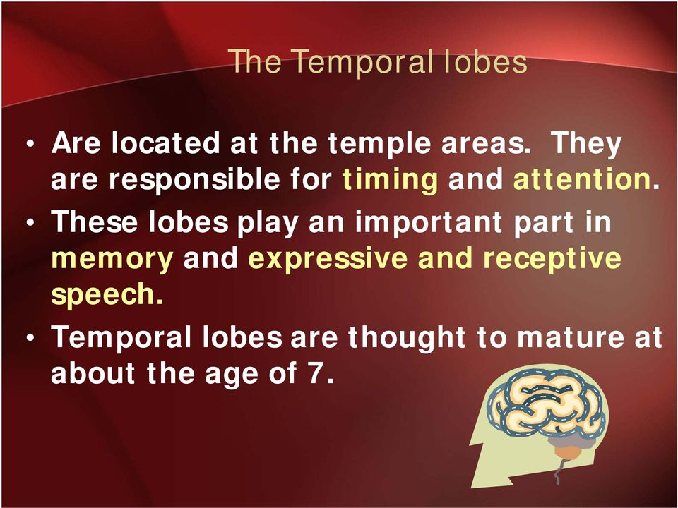 These lobes play an important part in memory and expressive