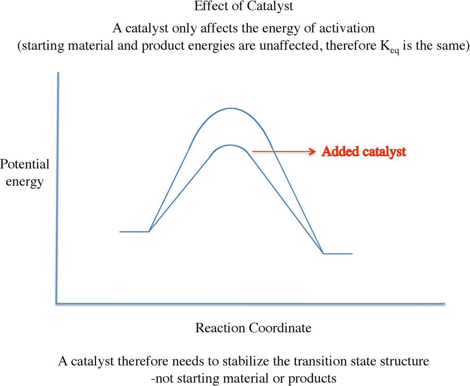 the same) Potential energy Reaction Coordinate A catalyst therefore needs