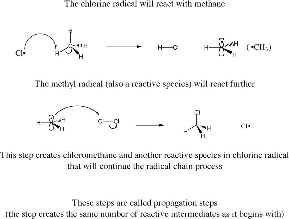 species in chlorine radical that will continue the radical chain process These steps are