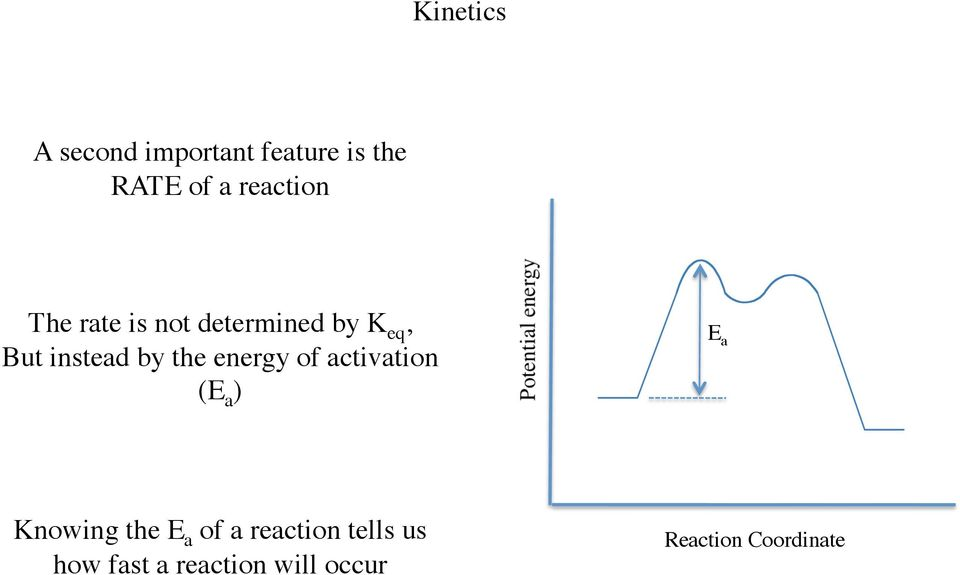 the energy of activation (E a ) E a Knowing the E a of a