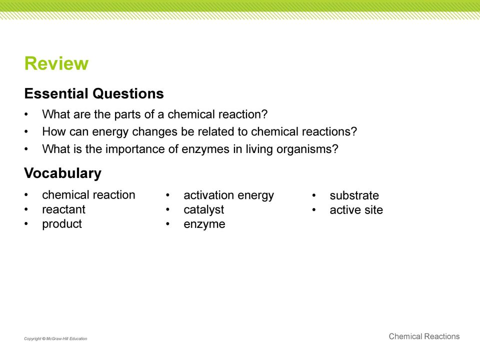 What is the importance of enzymes in living organisms?