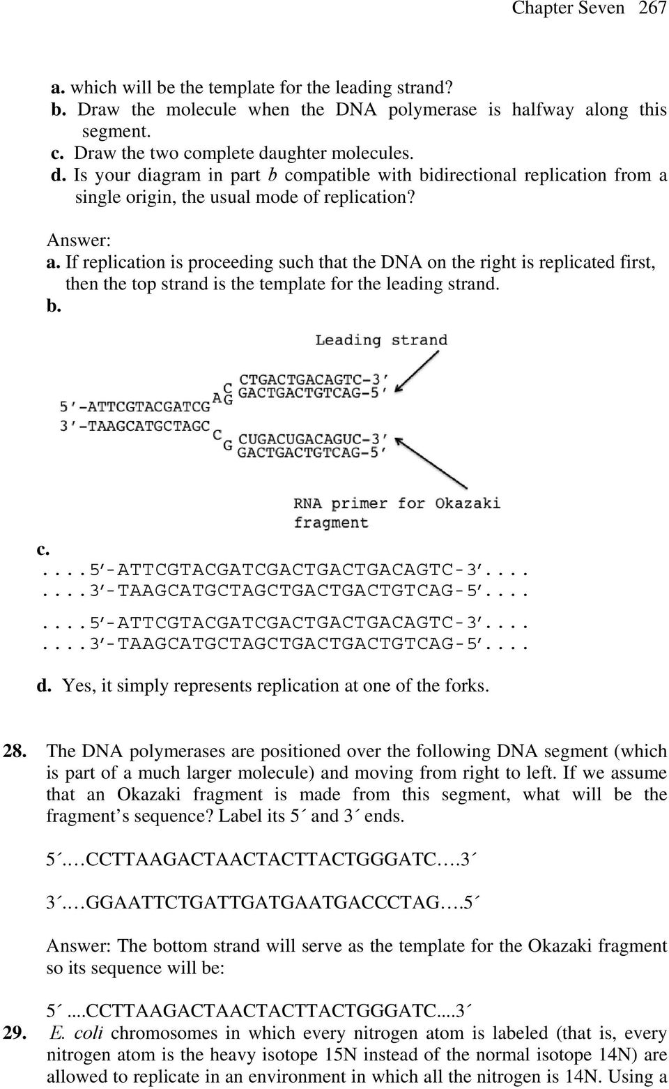 Dna Structure And Replication Pdf