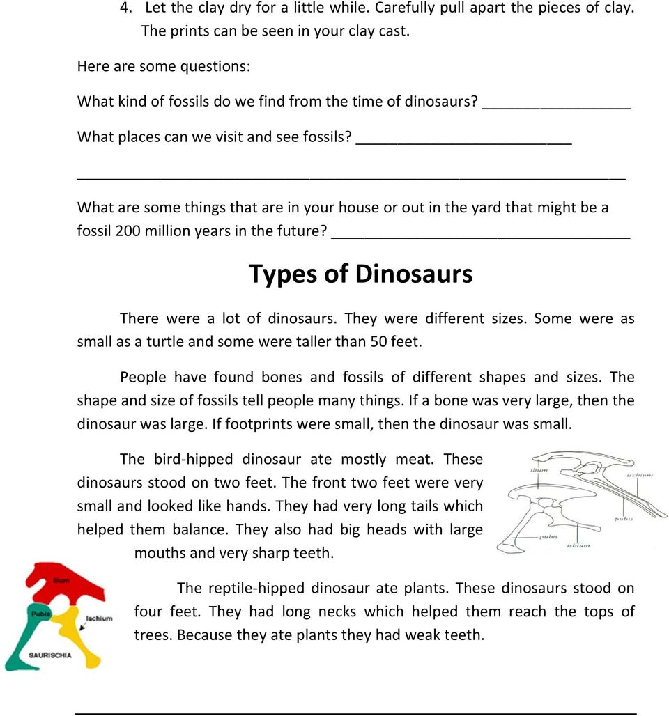 What are some things that are in your house or out in the yard that might be a fossil 200 million years in the future? Types of Dinosaurs There were a lot of dinosaurs. They were different sizes.