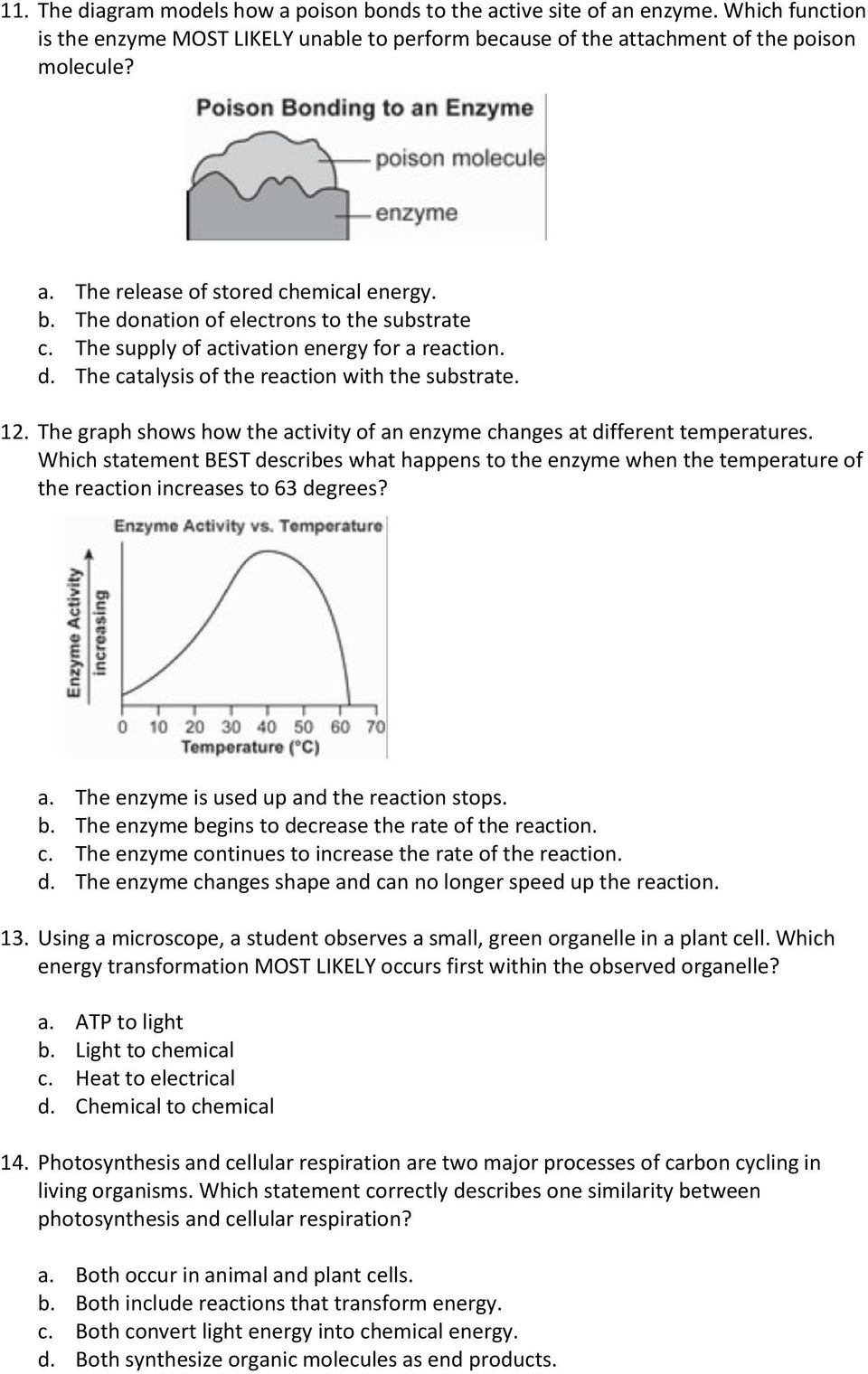 The graph shows how the activity of an enzyme changes at different temperatures. Which statement BEST describes what happens to the enzyme when the temperature of the reaction increases to 63 degrees?