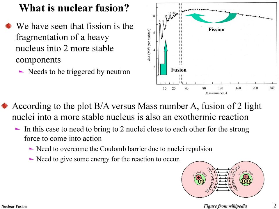 Fission According to the plot B/A versus Mass number A, fusion of 2 light nuclei into a more stable nucleus is also an exothermic reaction