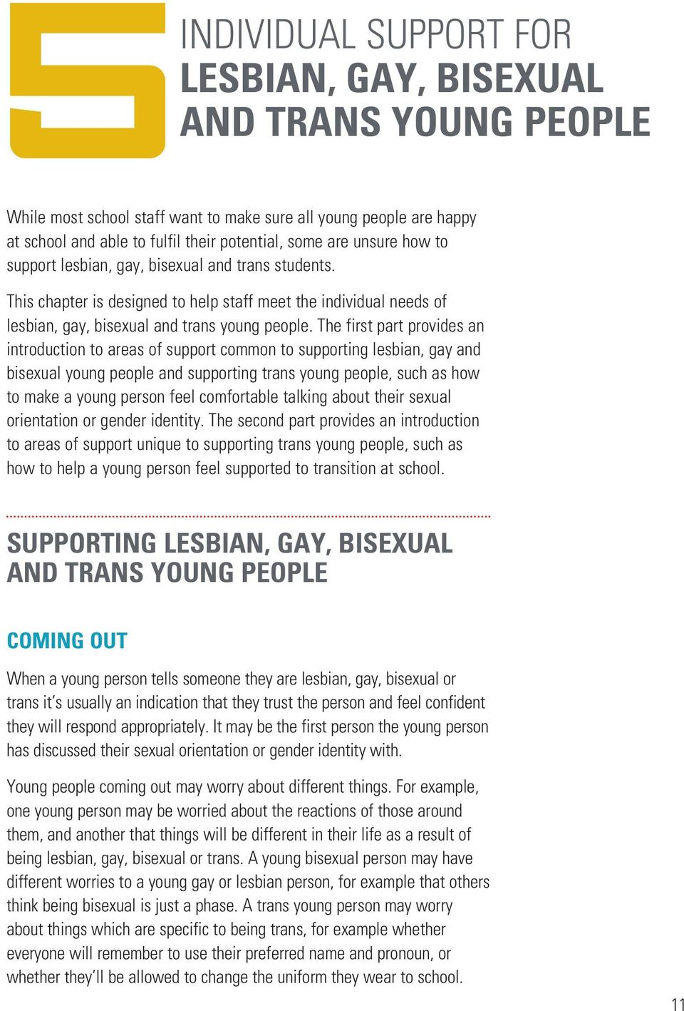 The first part provides an introduction to areas of support common to supporting lesbian, gay and bisexual young people and supporting trans young people, such as how to make a young person feel