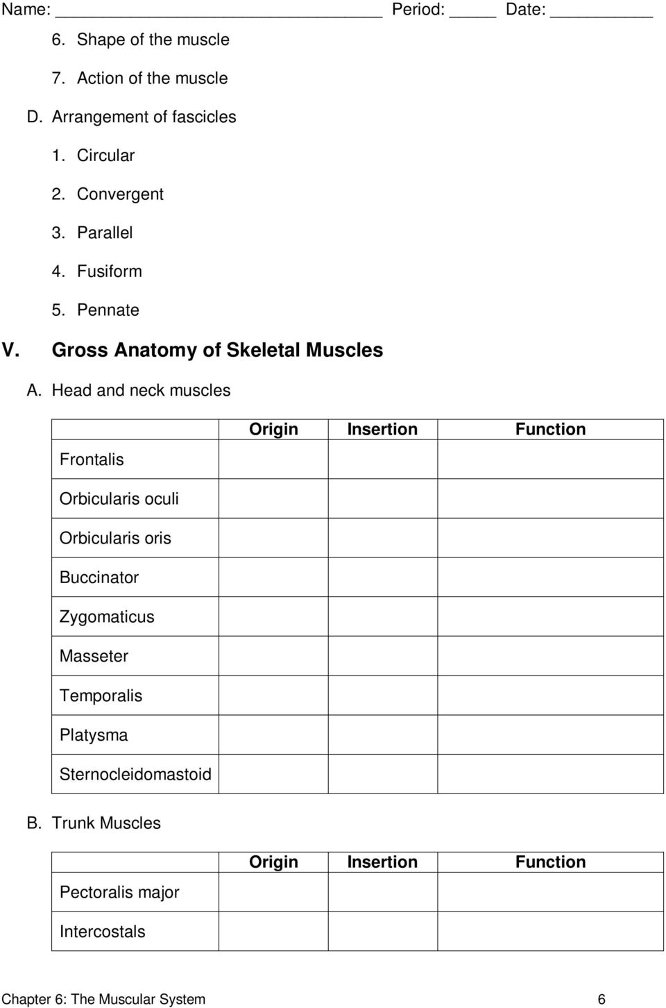 Workbooks » Anatomy And Physiology Coloring Workbook Answers Chapter ...