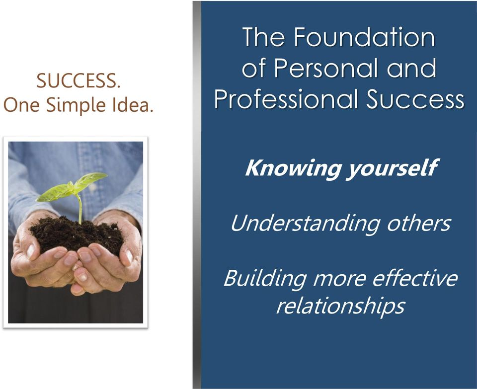Professional Success Knowing yourself
