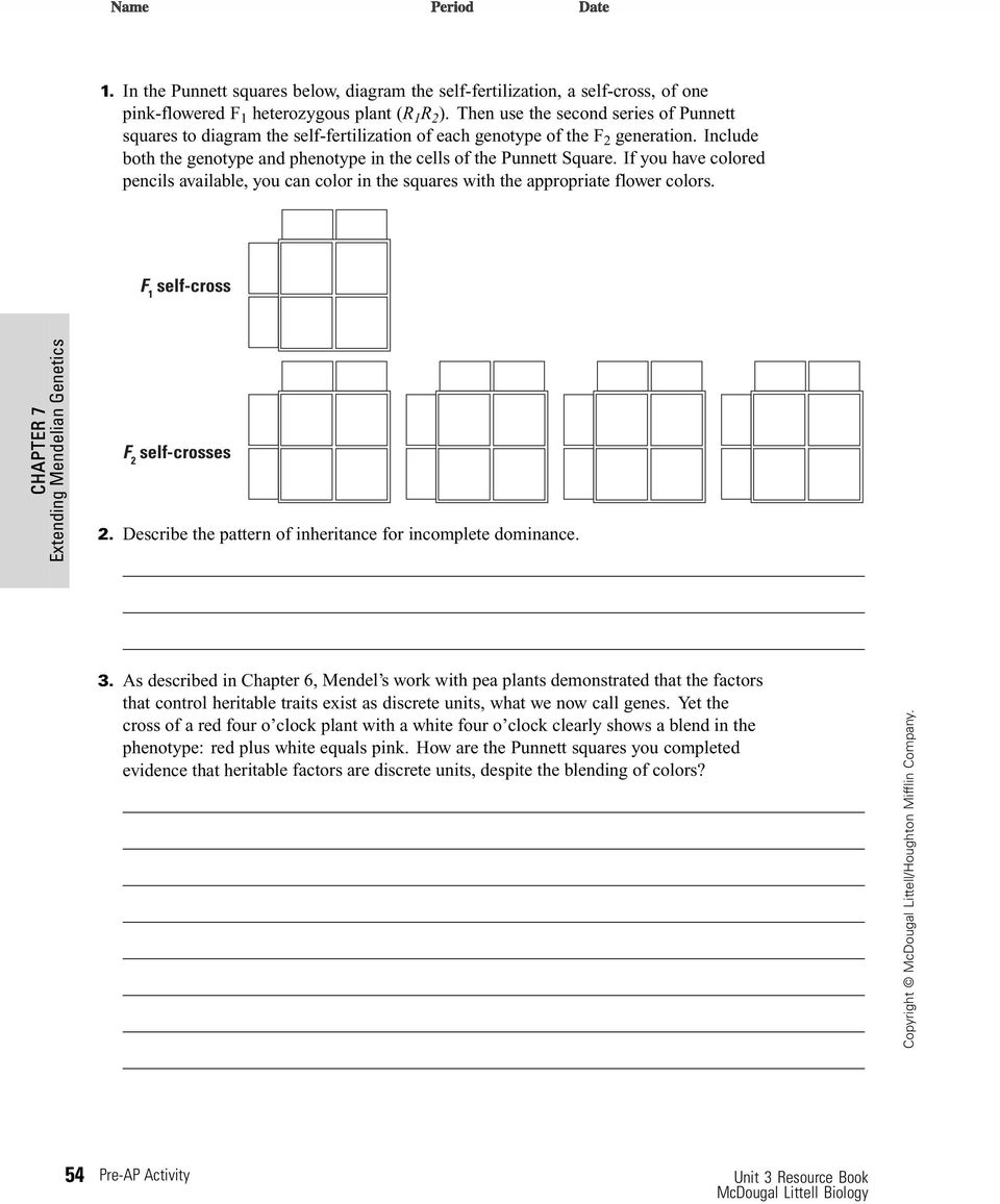 Genotype and phenotype worksheet