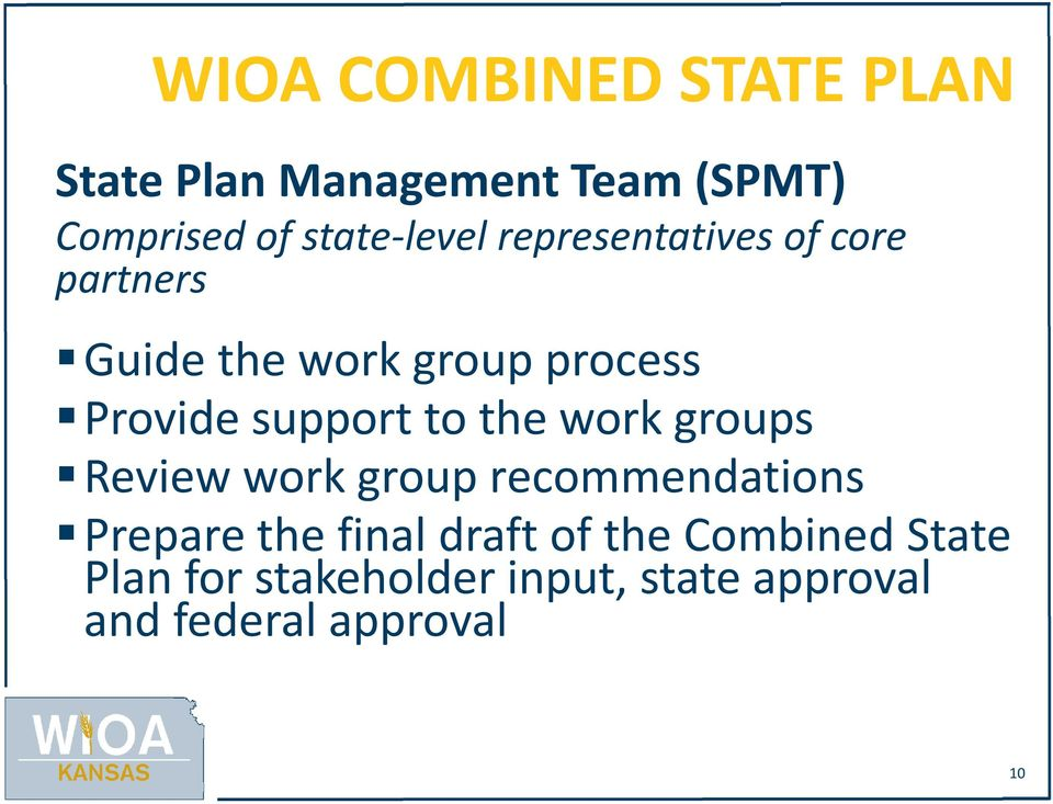 support to the work groups Review work group recommendations Prepare the final