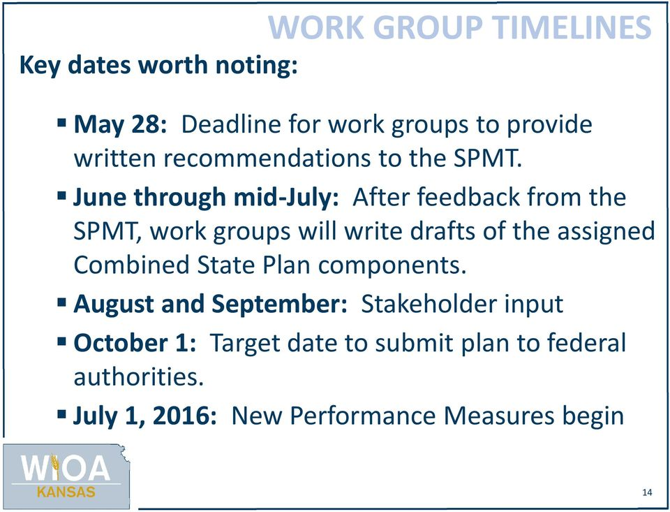June through mid-july: After feedback from the SPMT, work groups will write drafts of the assigned