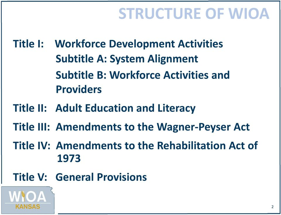 Adult Education and Literacy Title III: Amendments to the Wagner-Peyser Act