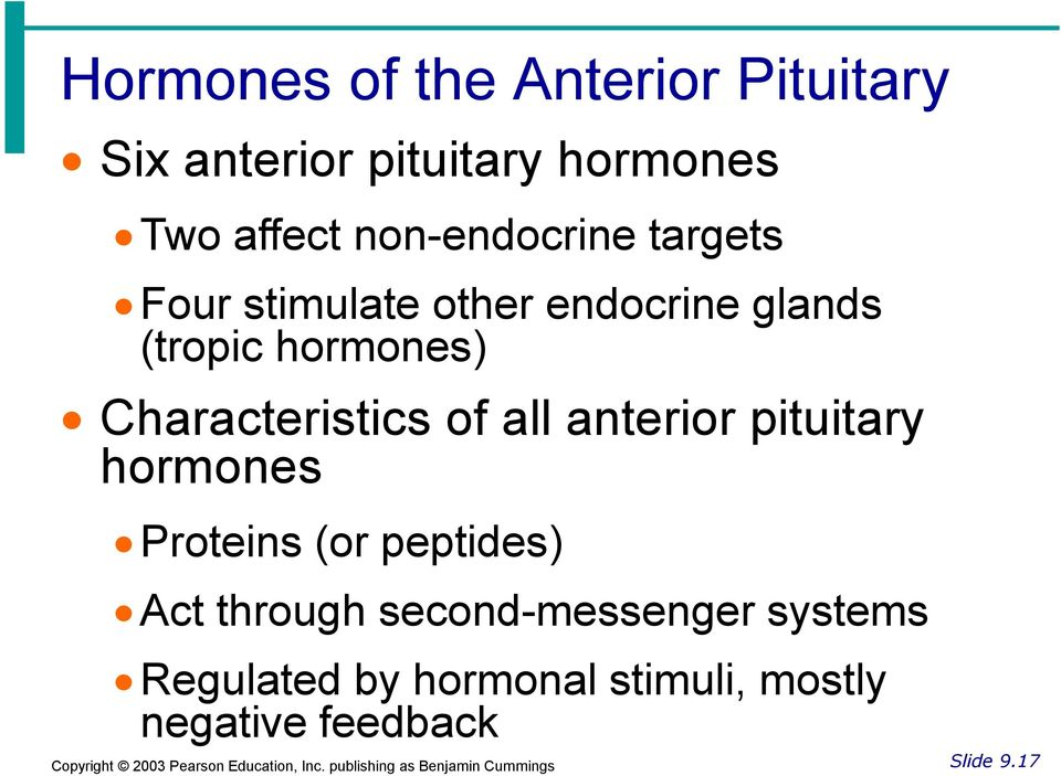 Characteristics of all anterior pituitary hormones Proteins (or peptides) Act
